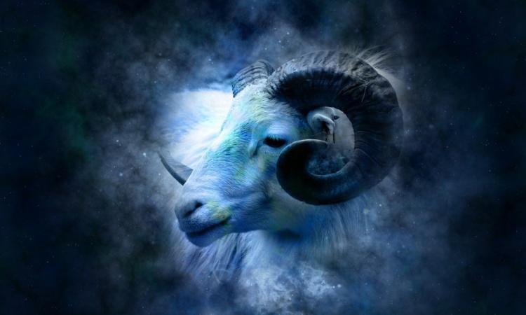 Zvieratko narodené v znamení BARANA