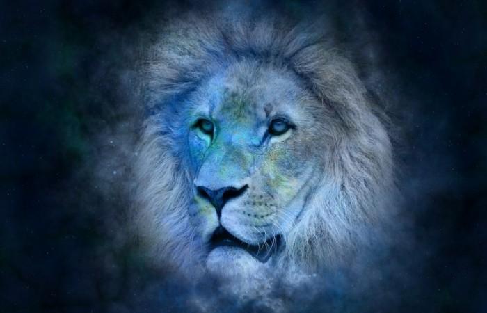 Zvieratko narodené v znamení LEVA