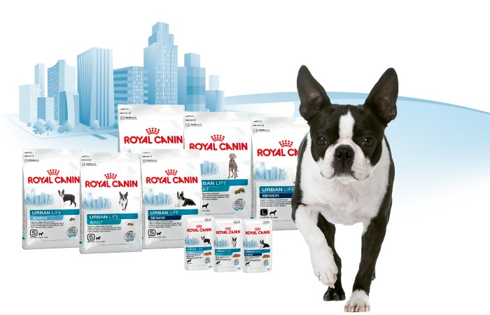 Royal Canin - Urban Life