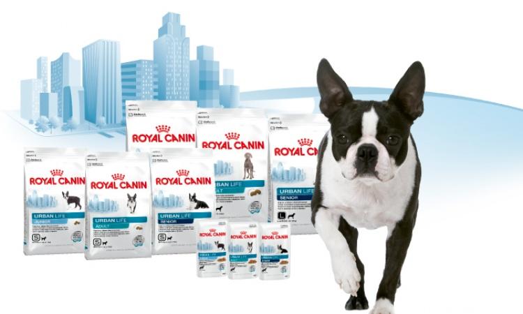 Royal Canin - Urban Life